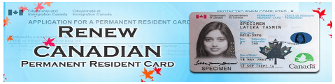 How to renew pr card