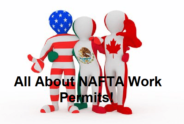 What a NAFTA Work Permit Is