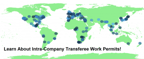 About Intra-Company Transferee Work Permits